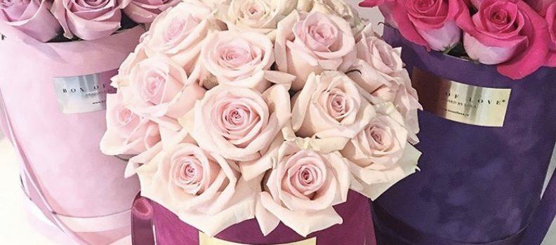 SHAKESPEARE ROSES